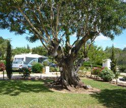 emplacement camping peniscola pas cher